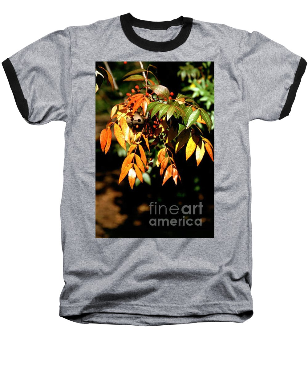 Fall Color Baseball T-Shirt featuring the photograph Fall Leaves by Kathy McClure