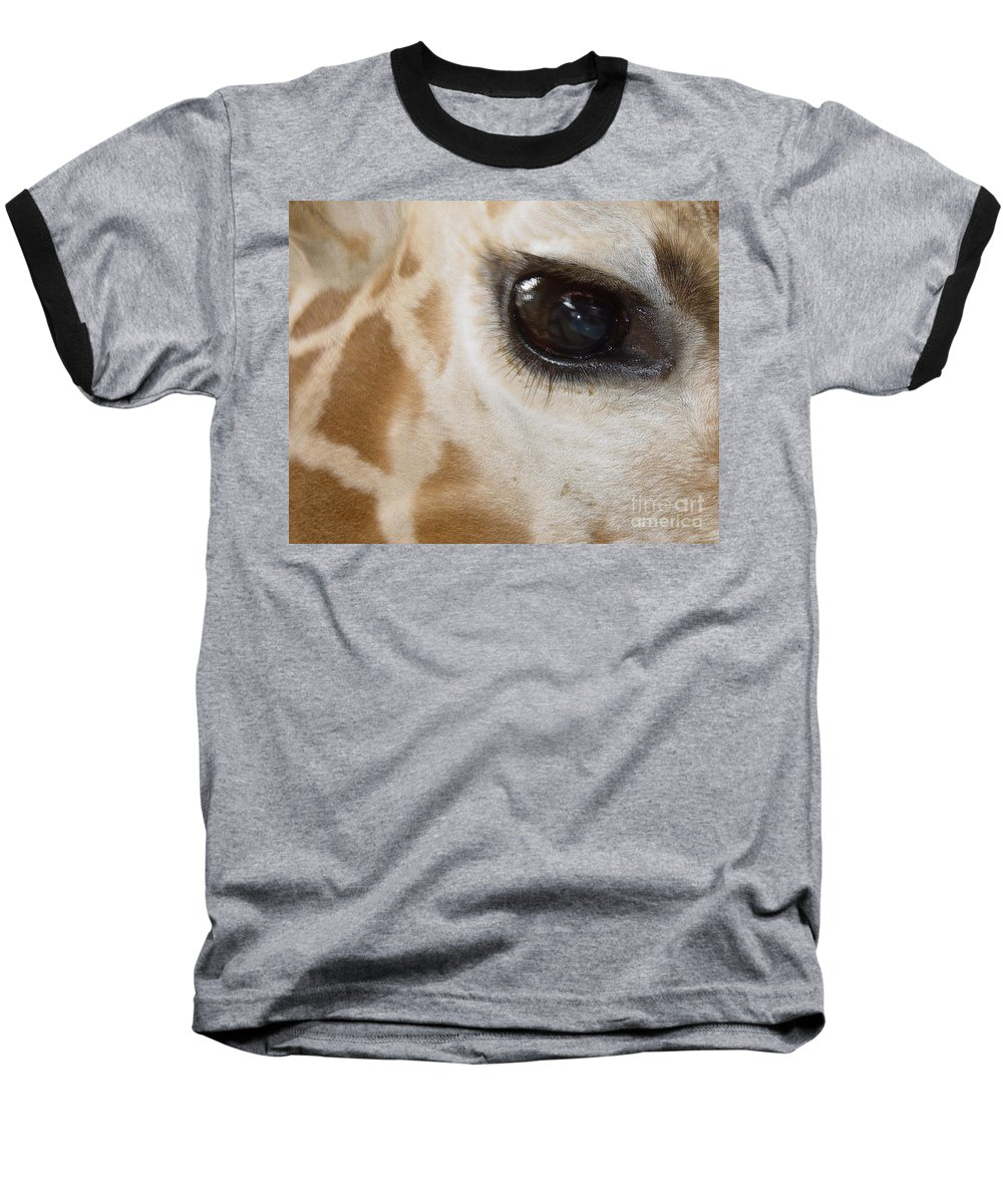 Giraffe Baseball T-Shirt featuring the photograph Giraffe Eye by Heather Coen