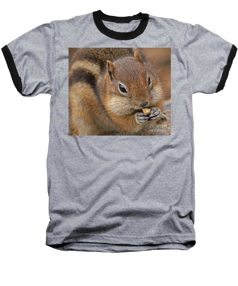 Ground Squirrel Baseball T-Shirt featuring the photograph Ground Squirrel by Heather Coen