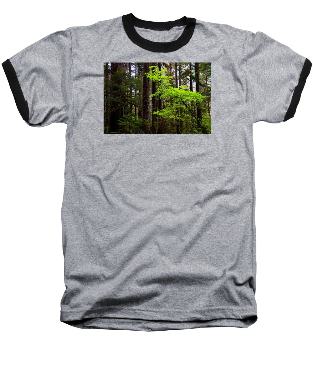 Olympic National Park Baseball T-Shirts