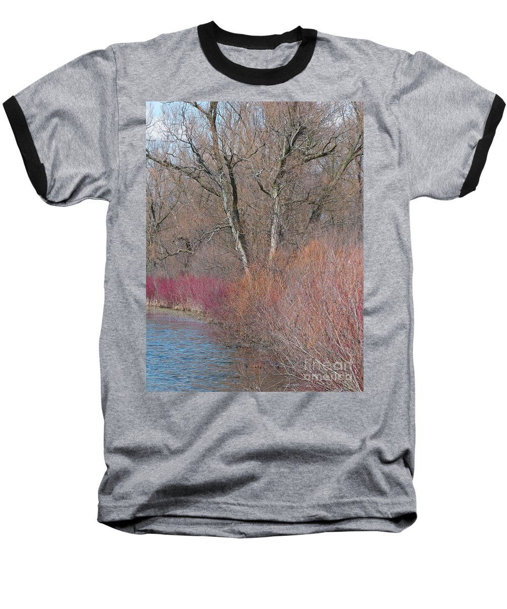 Spring Baseball T-Shirt featuring the photograph Hint Of Spring by Ann Horn