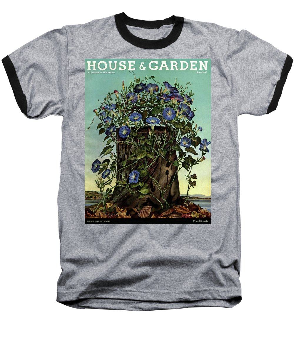 House And Garden Baseball T-Shirt featuring the photograph House And Garden Cover Featuring Flowers Growing by Audrey Buller