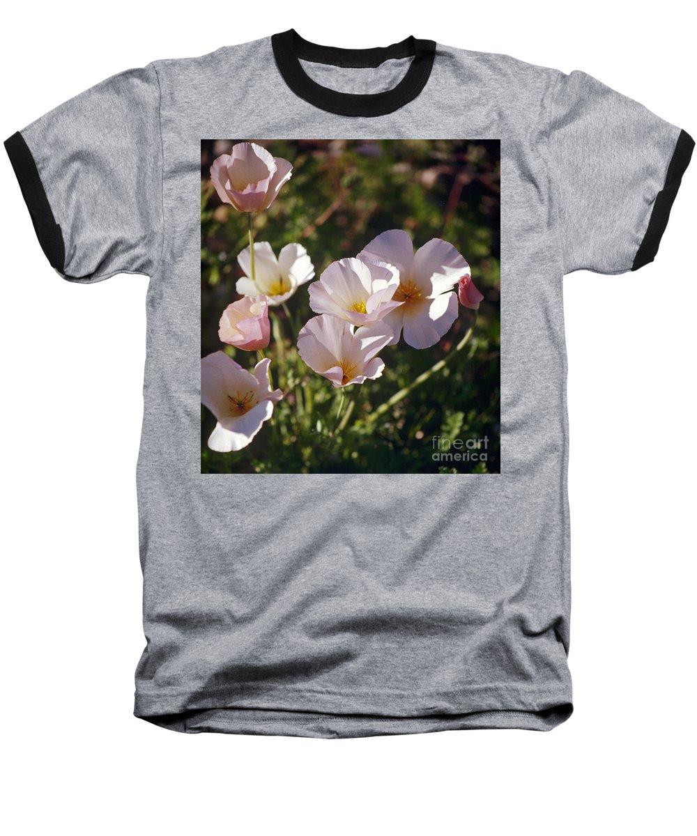 Flowers Baseball T-Shirt featuring the photograph Icelandic Poppies by Kathy McClure