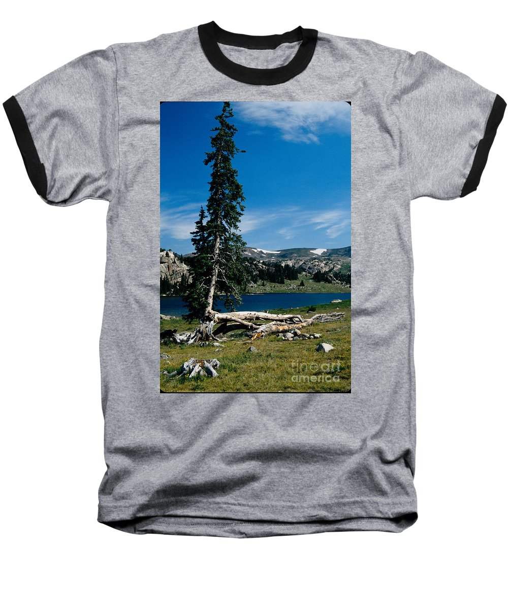 Mountains Baseball T-Shirt featuring the photograph Lone Tree At Pass by Kathy McClure
