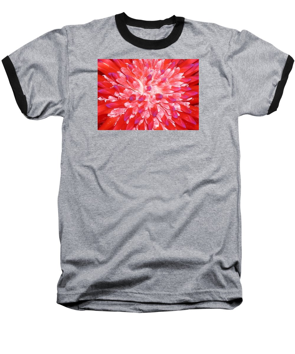 Hawaii Iphone Cases Baseball T-Shirt featuring the photograph Molokai Bromeliad by James Temple