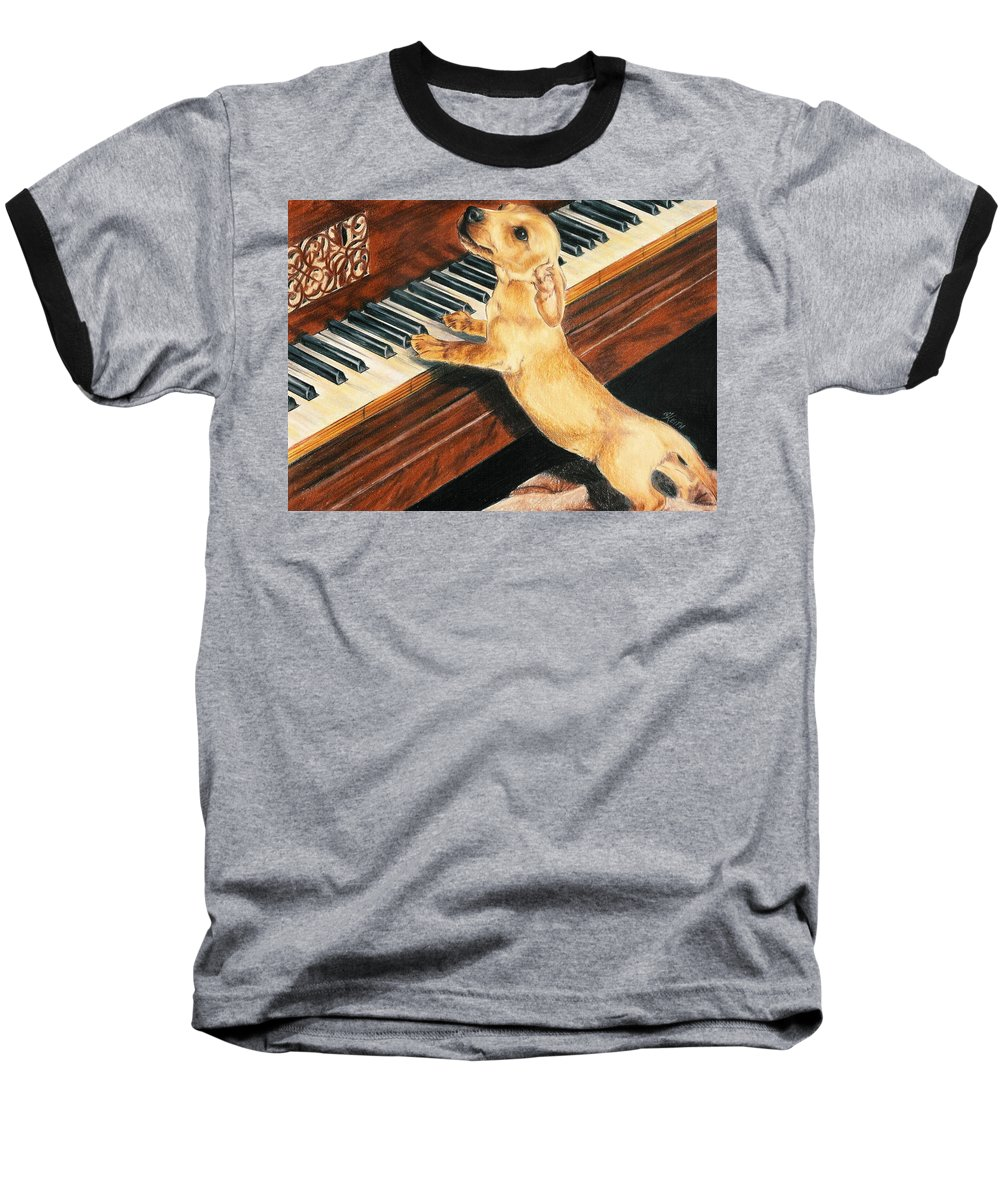 Purebred Dog Baseball T-Shirt featuring the drawing Mozart's Apprentice by Barbara Keith