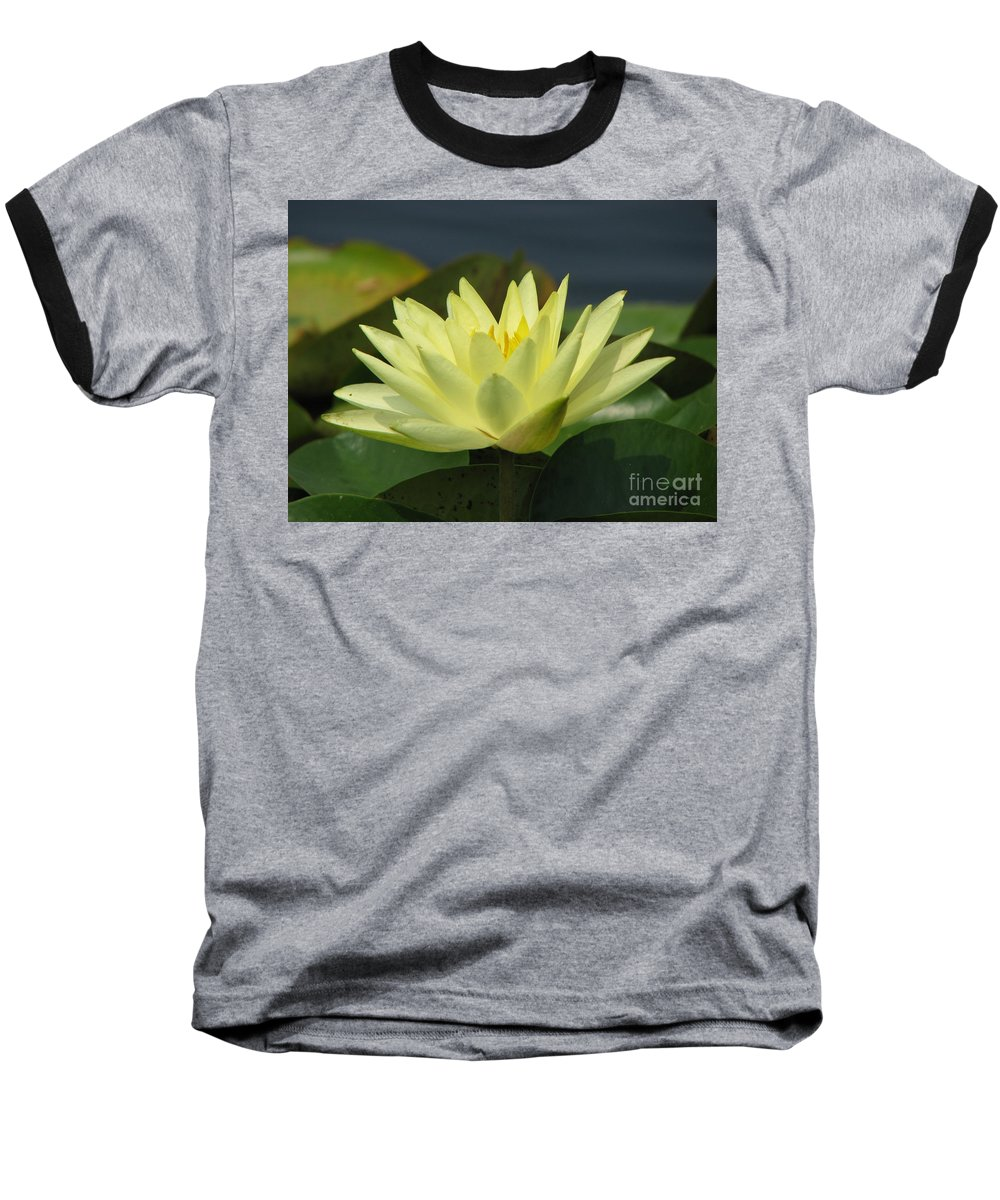 Lillies Baseball T-Shirt featuring the photograph Peace by Amanda Barcon