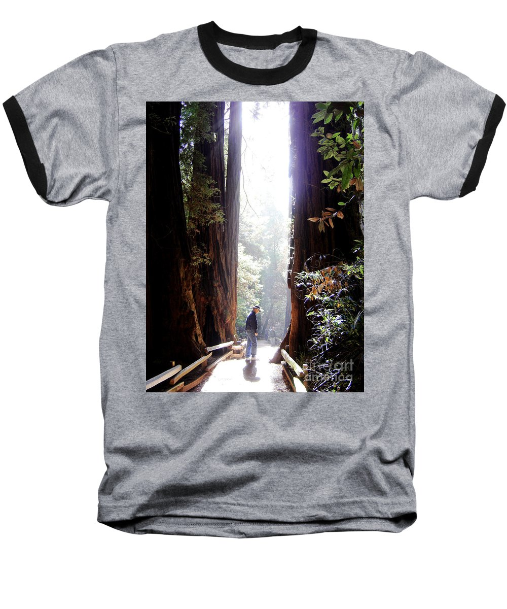 Pathway Baseball T-Shirt featuring the photograph Redwood Path by Mary Rogers