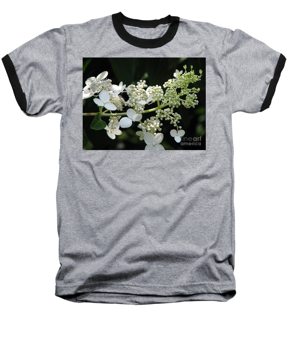 Hydrangea Baseball T-Shirt featuring the photograph Simply by Amanda Barcon