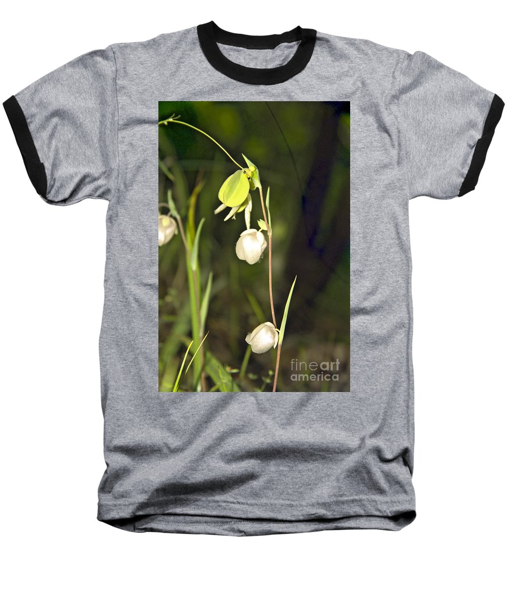 Wildflowers; Globes; Nature; Green; White Baseball T-Shirt featuring the photograph Whispers by Kathy McClure