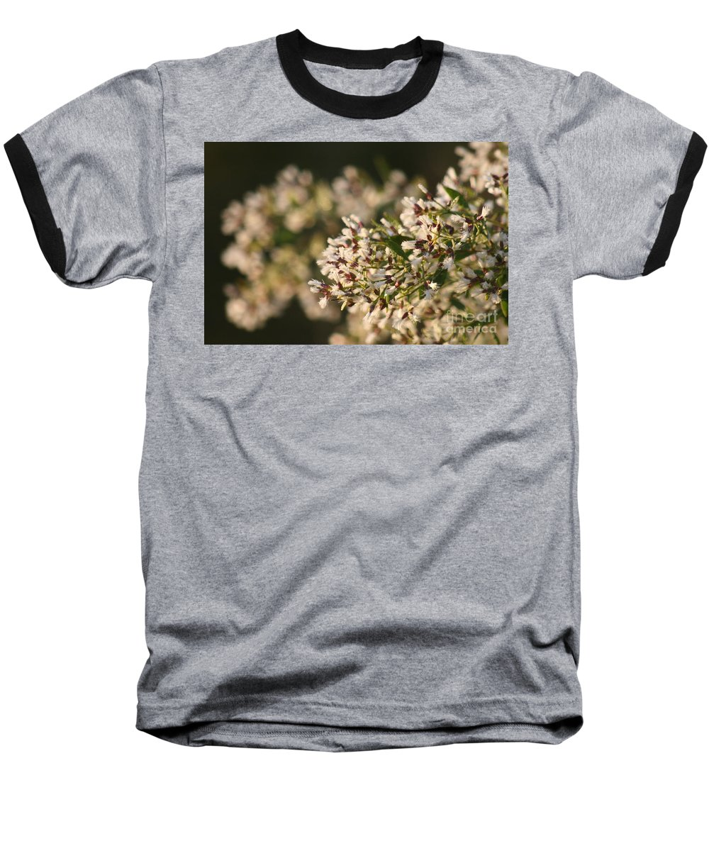 White Baseball T-Shirt featuring the photograph White Flowers by Nadine Rippelmeyer