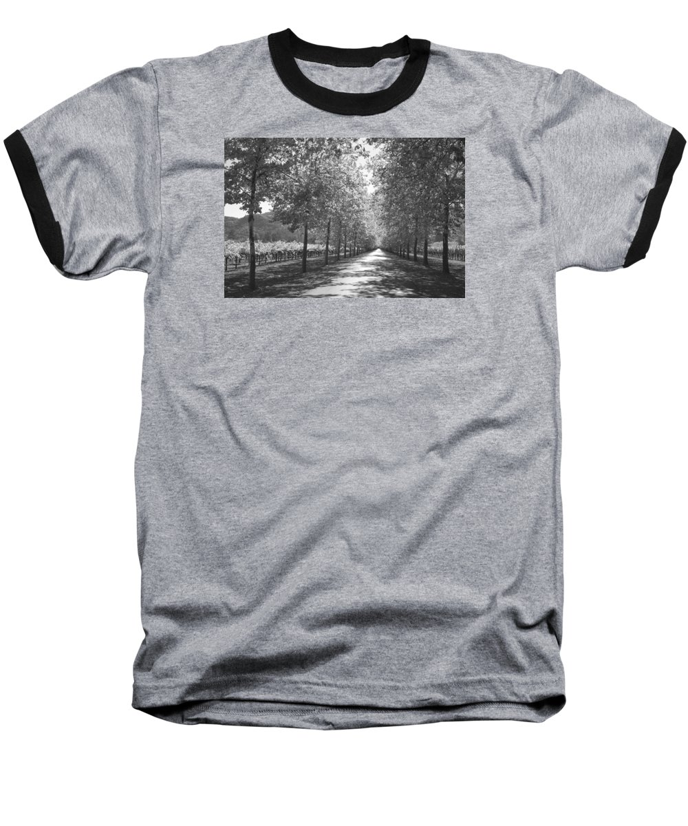 Black And White Baseball T-Shirt featuring the photograph Wine Country Napa Black And White by Suzanne Gaff