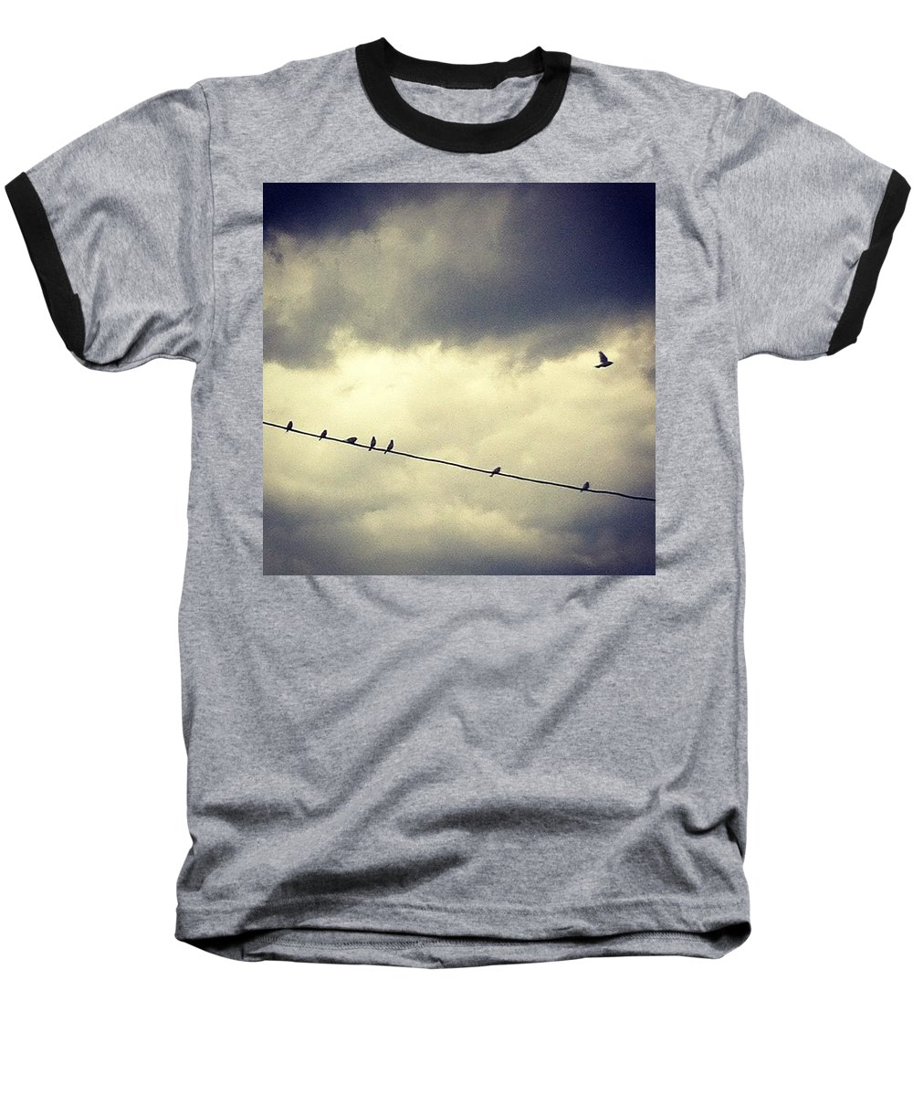Baseball T-Shirt featuring the photograph Da Birds by Katie Cupcakes
