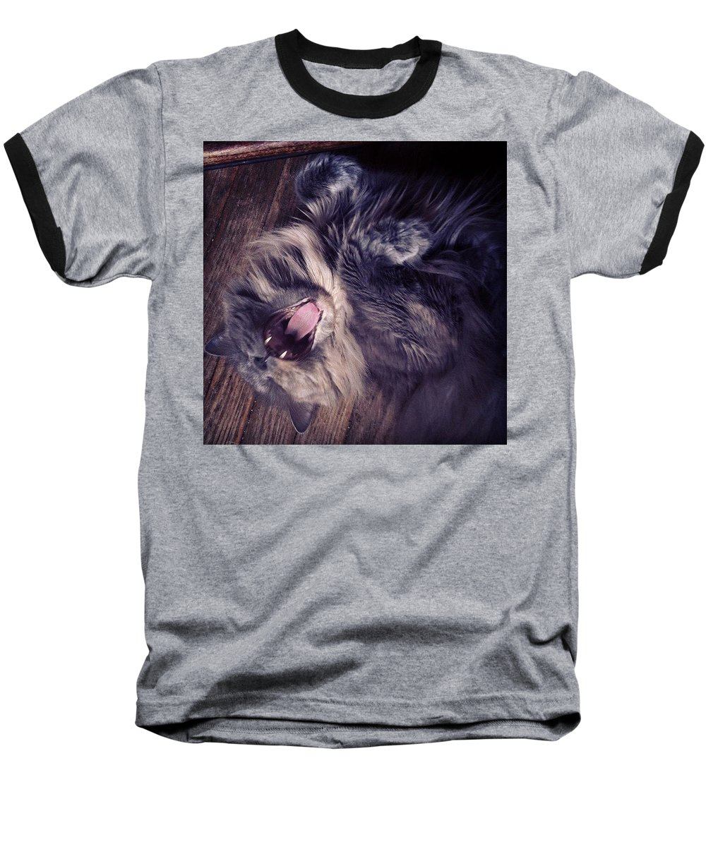 Fangs Baseball T-Shirt featuring the photograph Has #fangs. Not Afraid To Use 'em by Katie Cupcakes