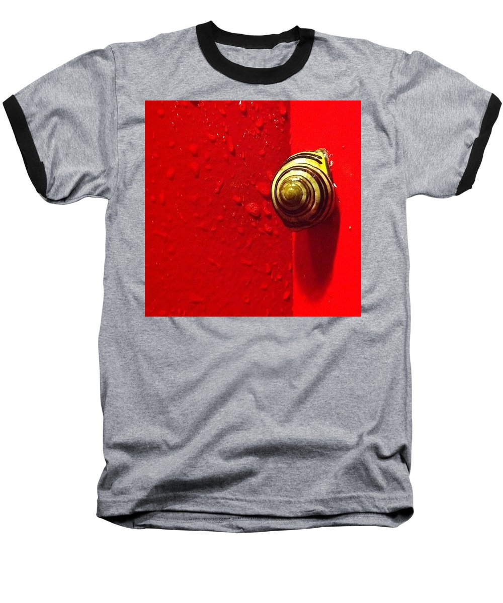 Nofilter Baseball T-Shirt featuring the photograph Never A Shortage Of #snails Back Here by Katie Cupcakes