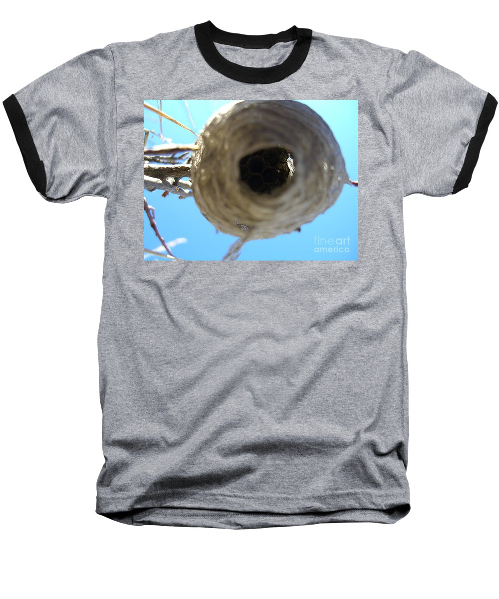 Photograph Bee Hive Blue Sky Branch Insect Baseball T-Shirt featuring the photograph Bee Hive by Seon-Jeong Kim
