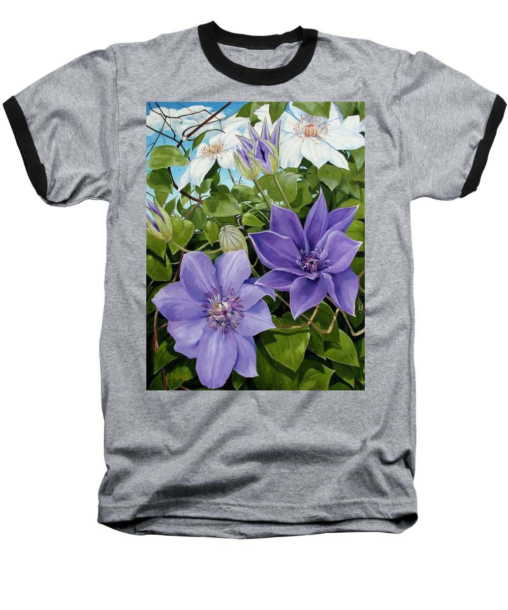 Clematis Baseball T-Shirt featuring the painting Clematis 2 by Jerrold Carton