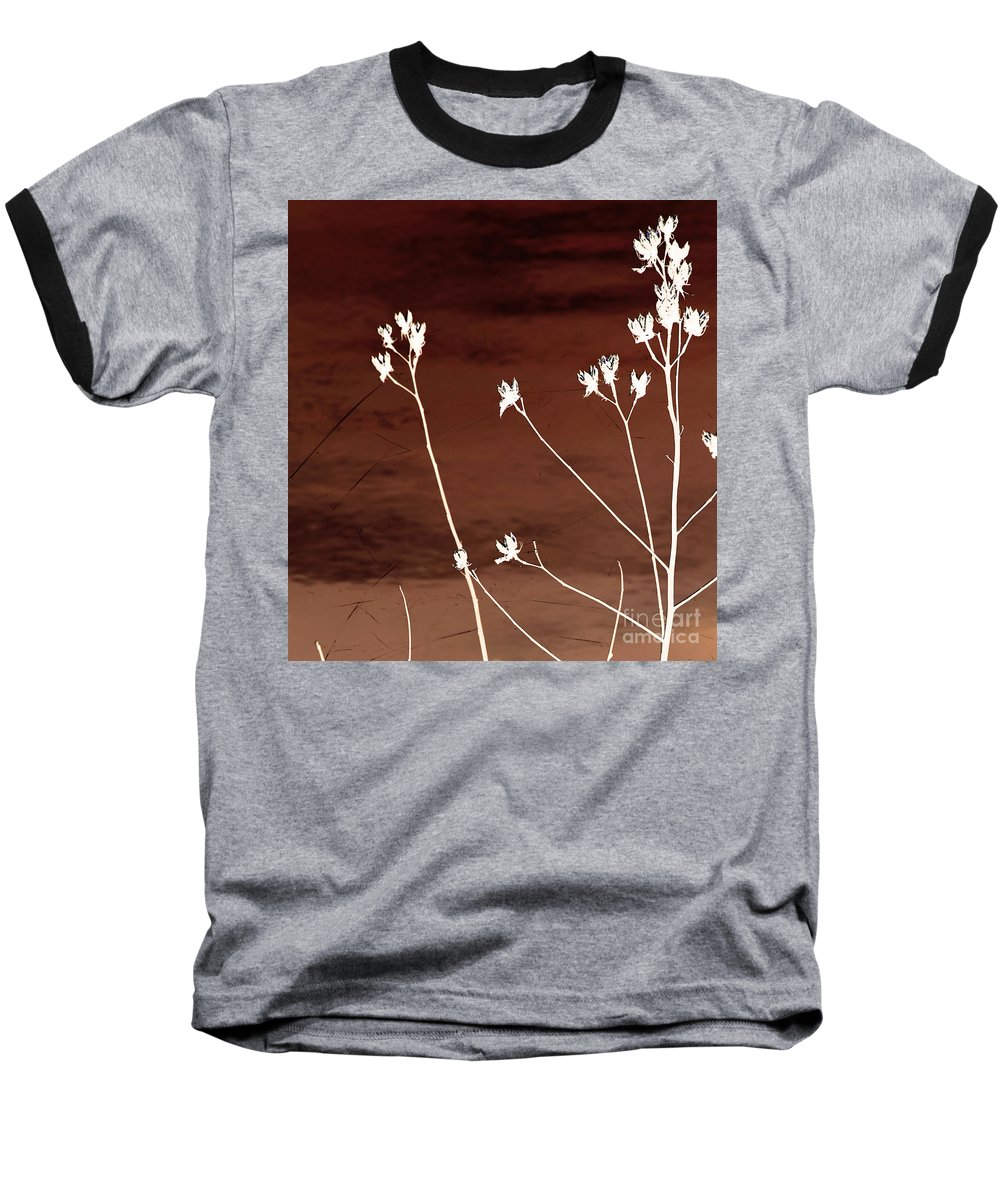 Flowers Baseball T-Shirt featuring the photograph Floral by Amanda Barcon