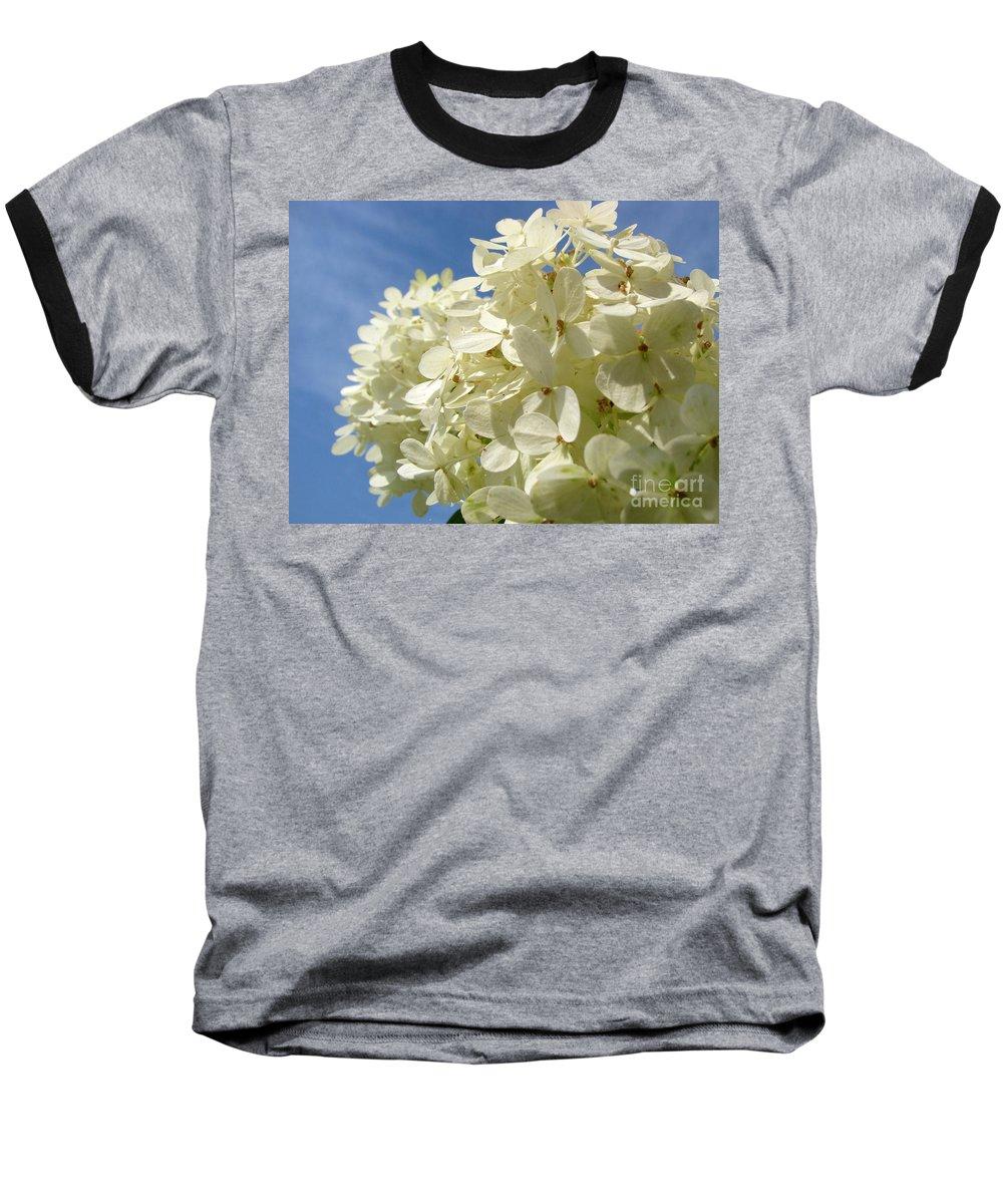 Hydranga Baseball T-Shirt featuring the photograph Hydrangea by Amanda Barcon