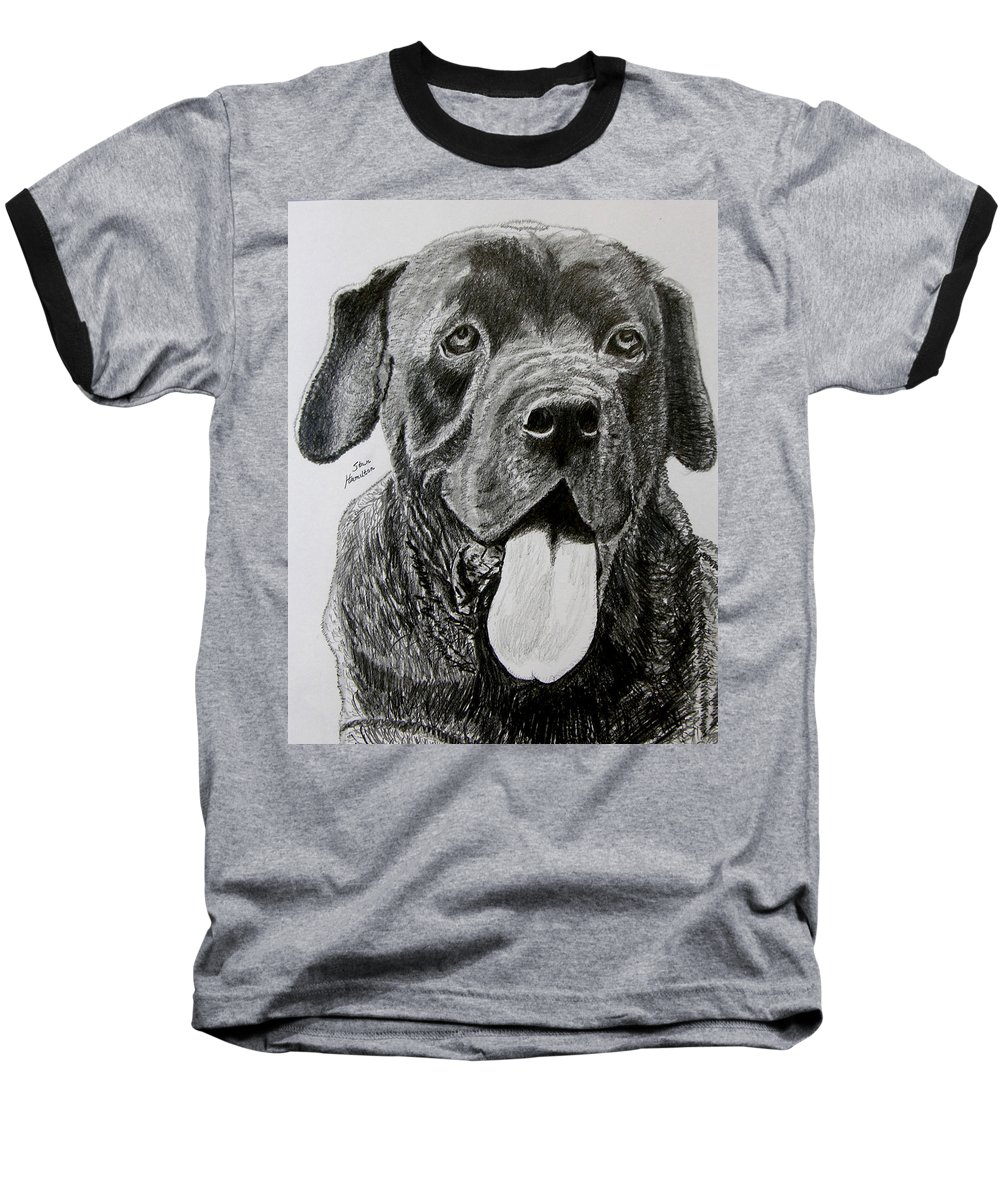 Dog Portrait Baseball T-Shirt featuring the drawing Sampson by Stan Hamilton
