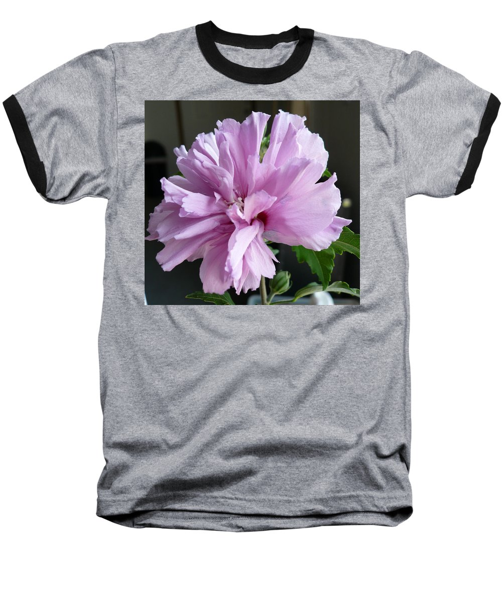 Phoyography.hibiscus Flower Floral Bloom Bush Pink Baseball T-Shirt featuring the photograph So Pink by Karin Dawn Kelshall- Best