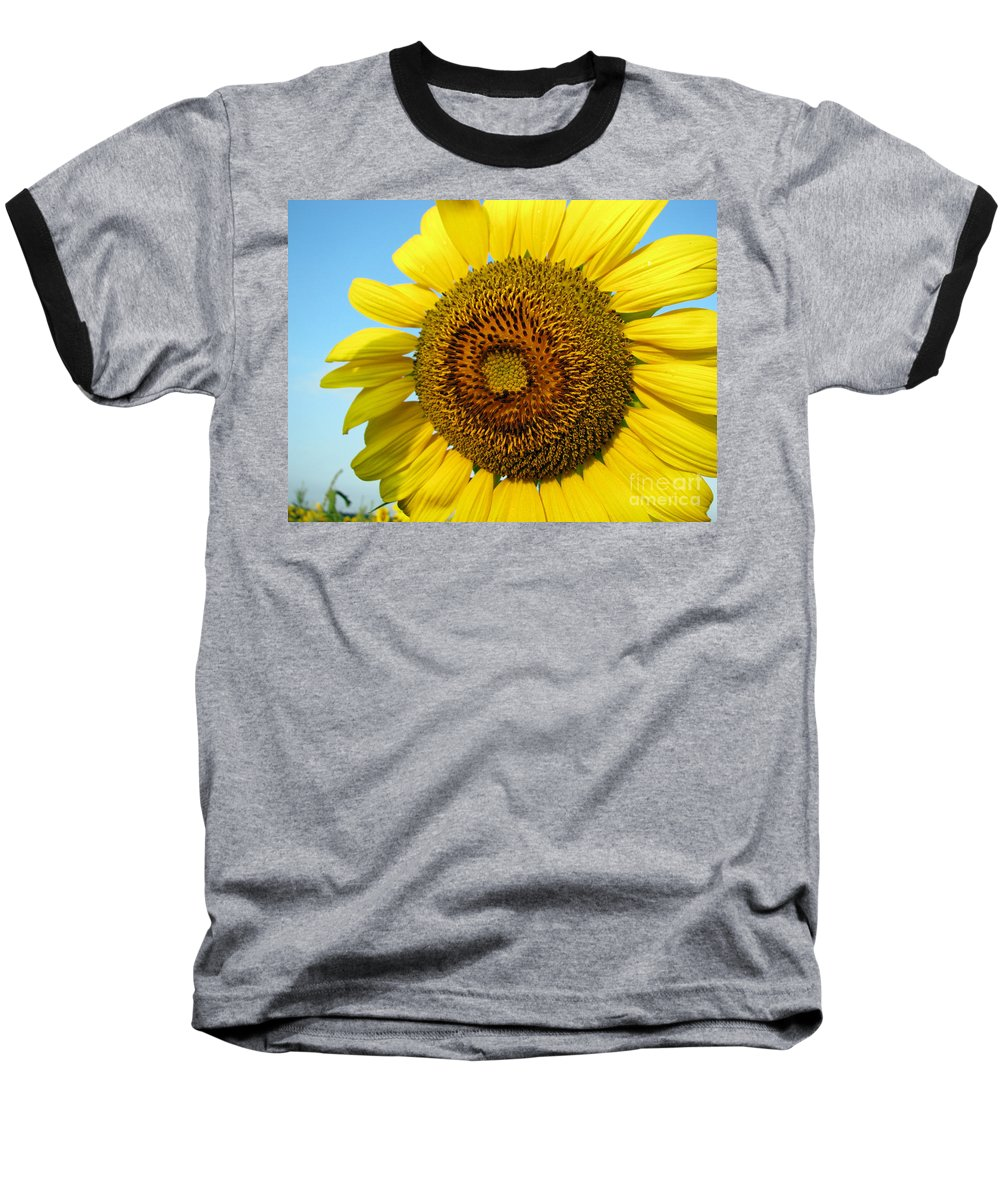 Sunflower Baseball T-Shirt featuring the photograph Sunflower Series by Amanda Barcon