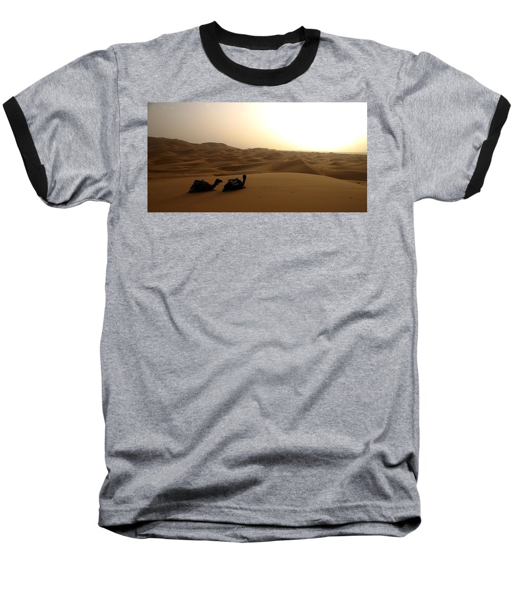 Camel Baseball T-Shirt featuring the photograph Two Camels At Sunset In The Desert by Ralph A Ledergerber-Photography