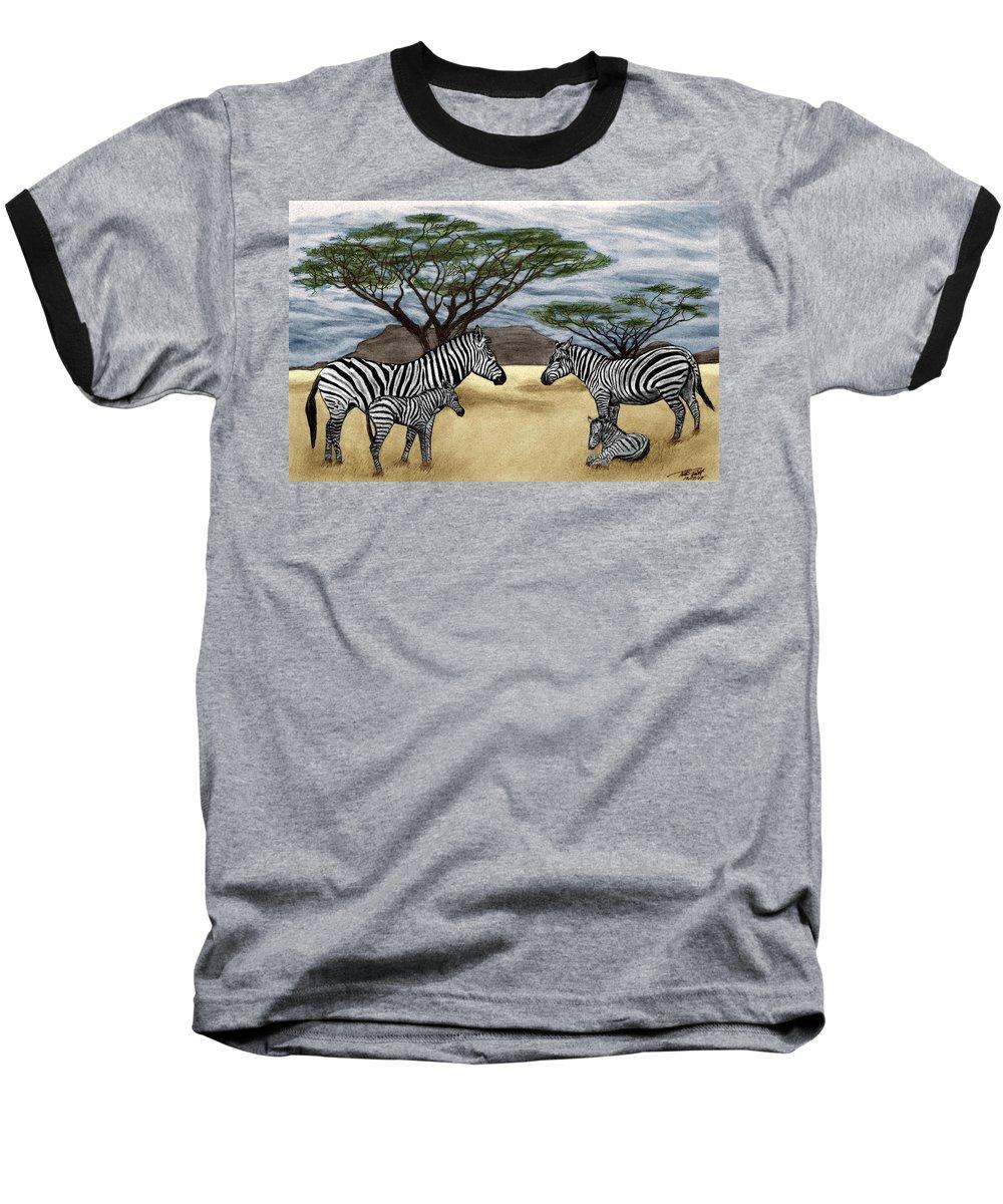 Zebra African Outback Baseball T-Shirt featuring the drawing Zebra African Outback by Peter Piatt