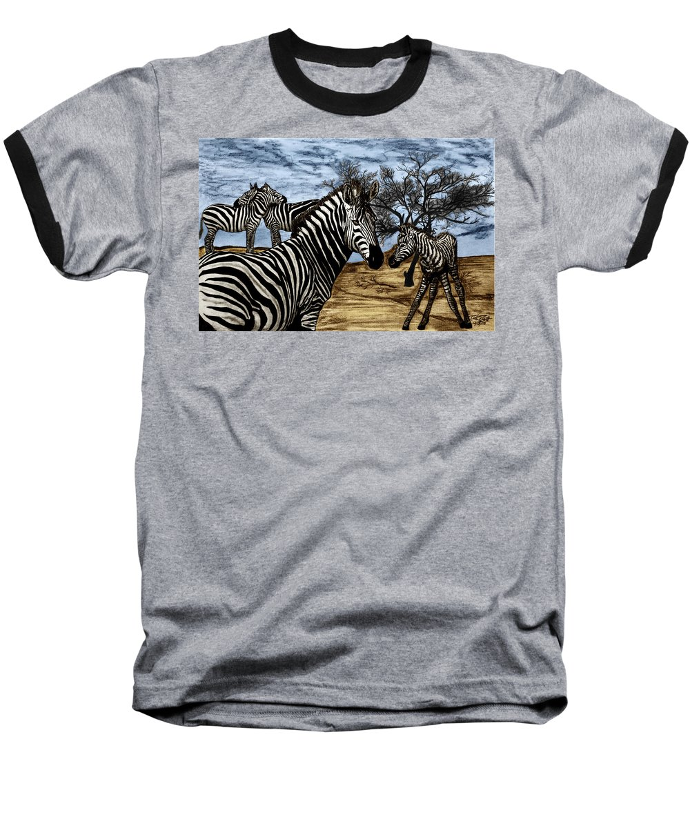 Zebra Outback Baseball T-Shirt featuring the drawing Zebra Outback by Peter Piatt