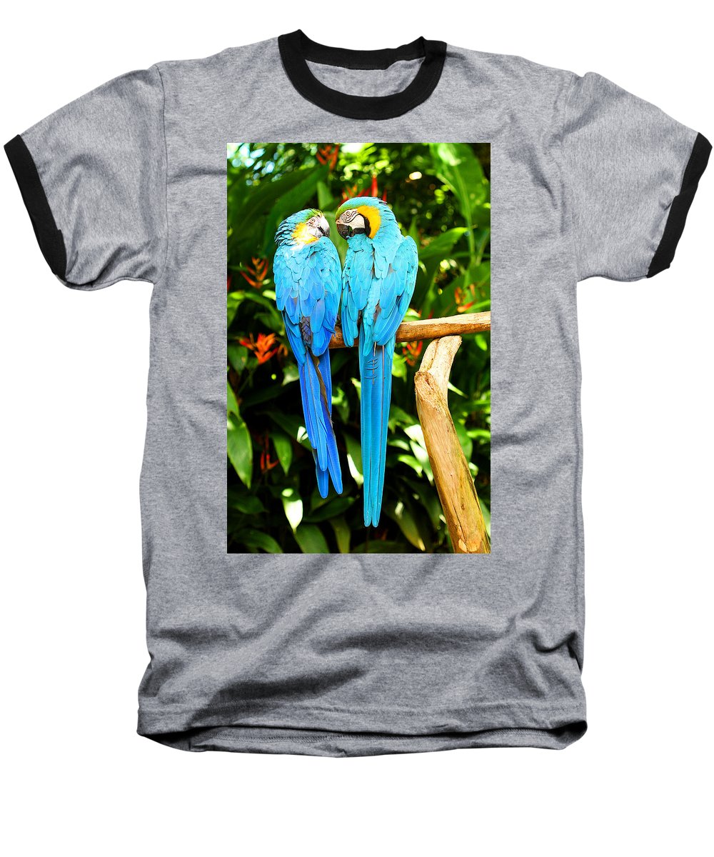 Bird Baseball T-Shirt featuring the photograph A Pair Of Parrots by Marilyn Hunt