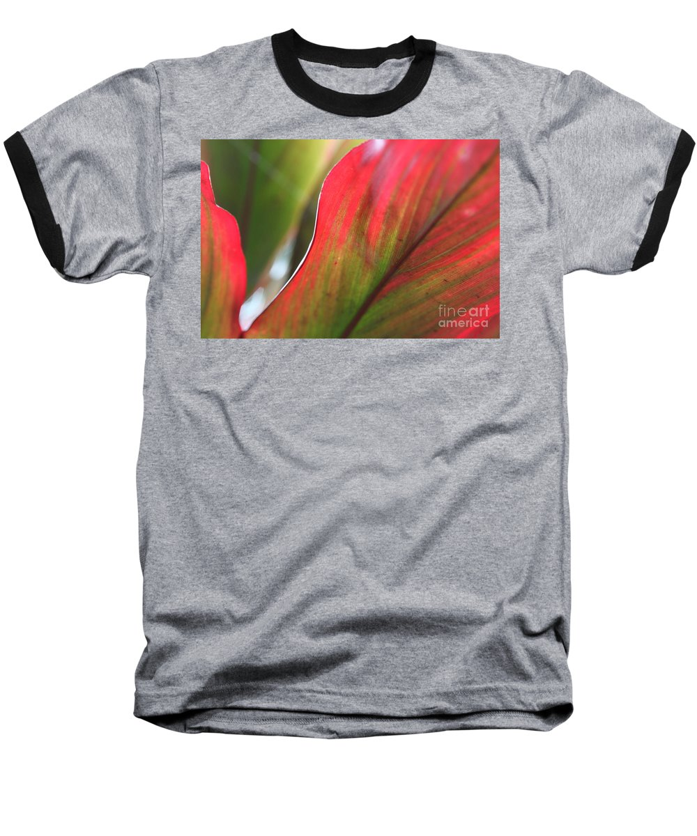 Pink Baseball T-Shirt featuring the photograph Abstract Leaves by Nadine Rippelmeyer