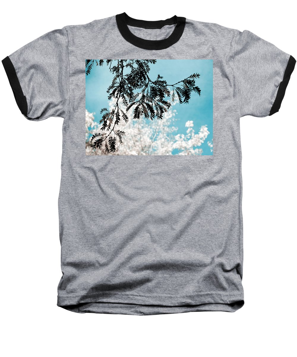 Tree Baseball T-Shirt featuring the photograph Abstract Locust by Marilyn Hunt