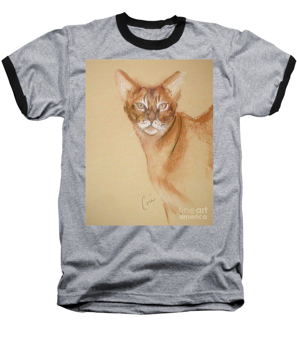 Pastel Baseball T-Shirt featuring the drawing Abyssinian by Cori Solomon