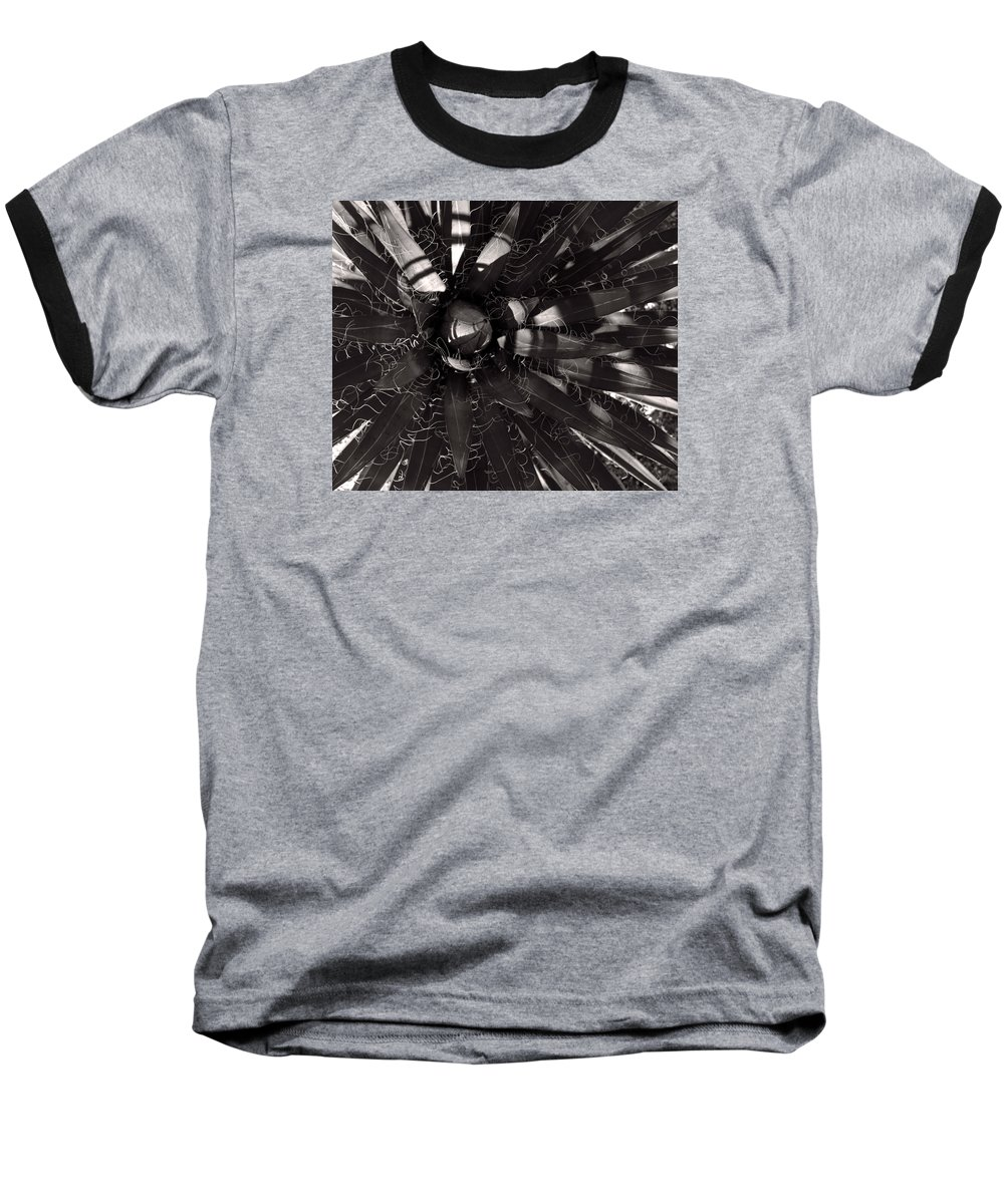 Agave Baseball T-Shirt featuring the photograph Agave by Steve Bisgrove