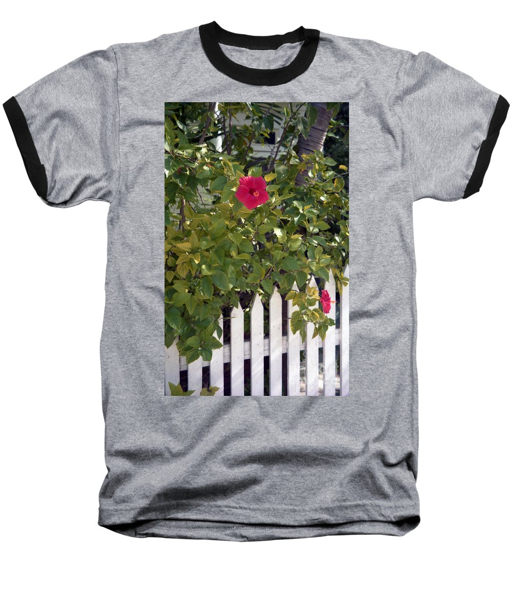 Azelea Baseball T-Shirt featuring the photograph Along The Picket Fence by Richard Rizzo