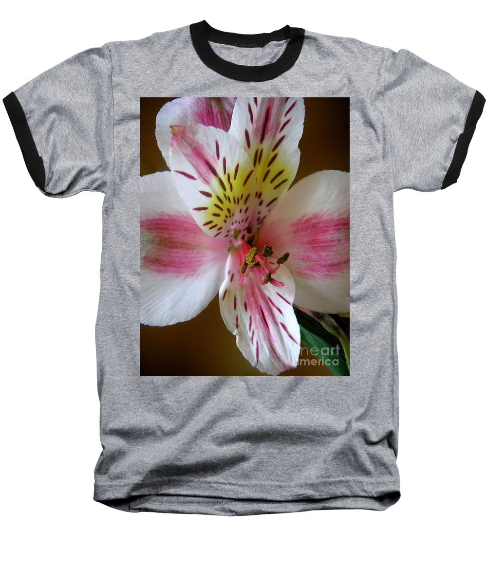 Nature Baseball T-Shirt featuring the photograph Alstroemerias - Close by Lucyna A M Green