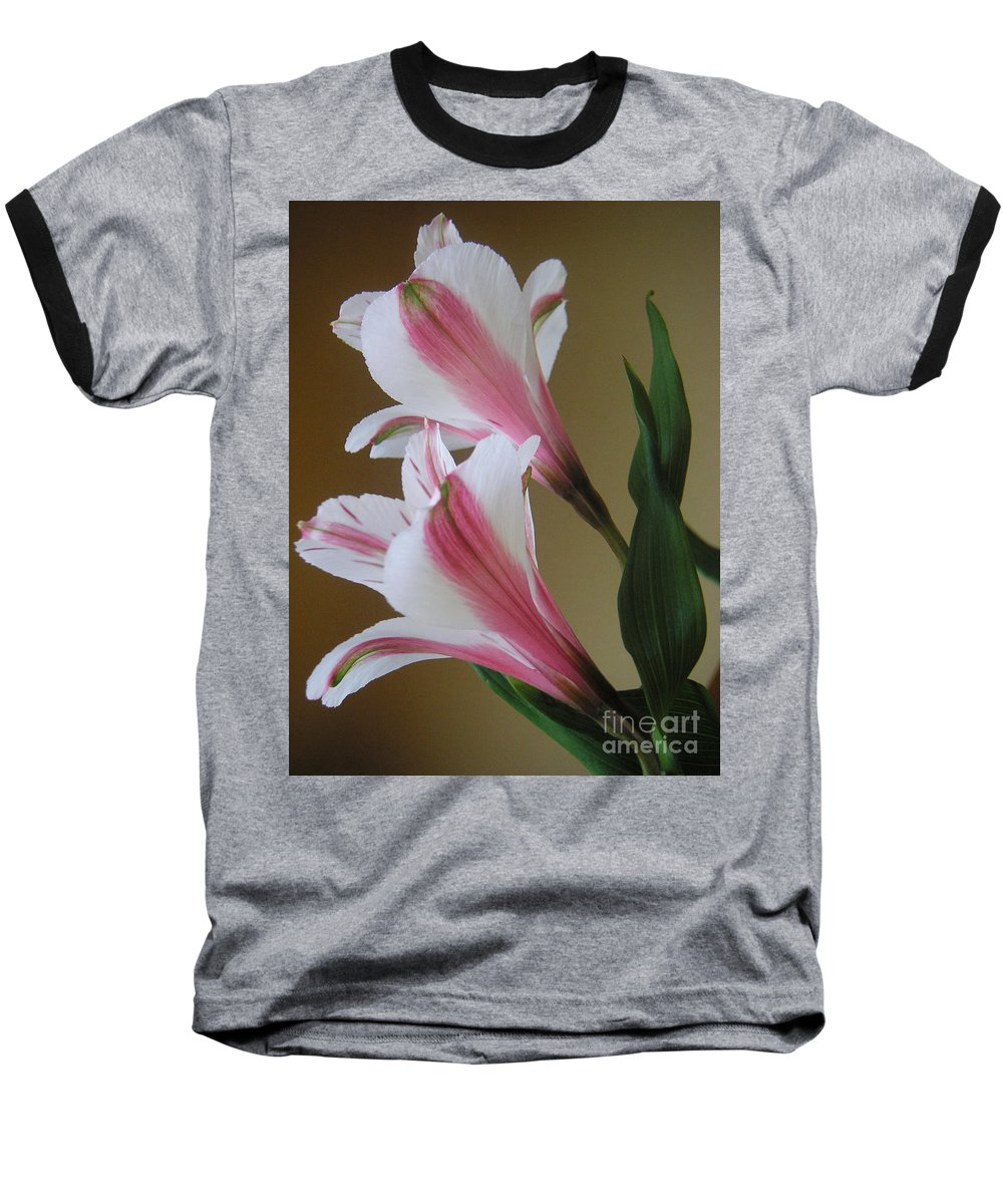 Nature Baseball T-Shirt featuring the photograph Alstroemerias - Doubled by Lucyna A M Green