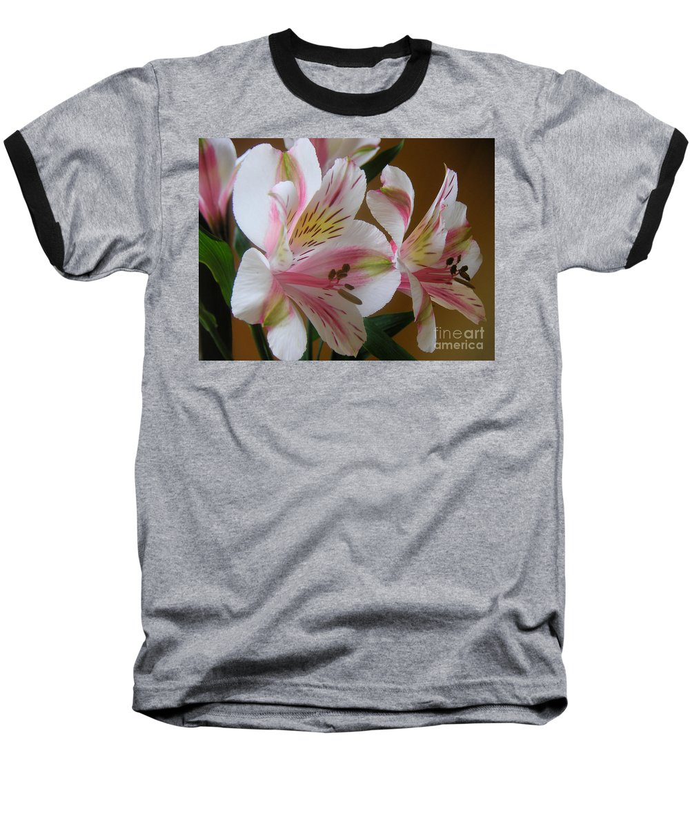 Nature Baseball T-Shirt featuring the photograph Alstroemerias - Listening by Lucyna A M Green