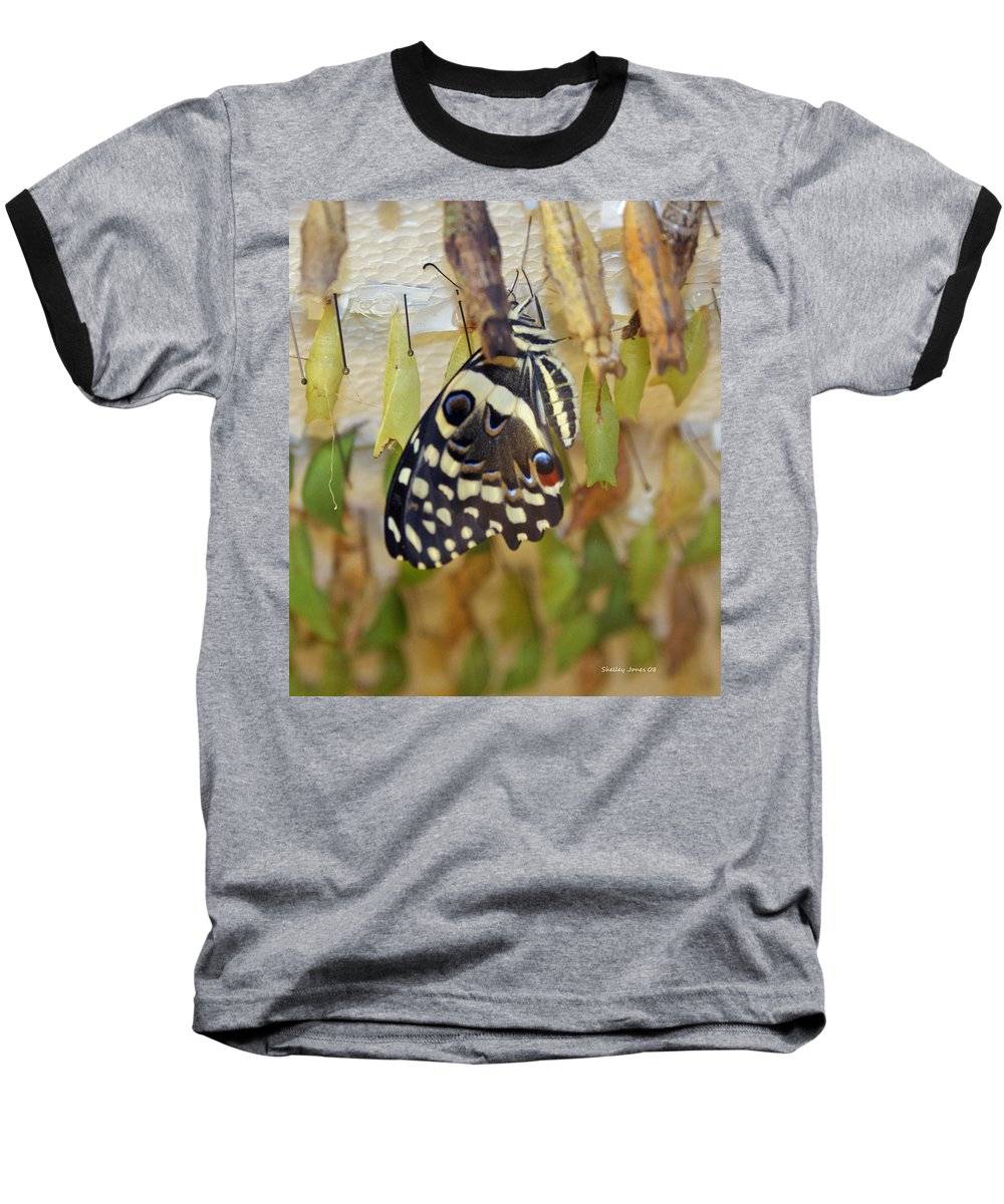 Butterfly Baseball T-Shirt featuring the photograph And Life Begins by Shelley Jones