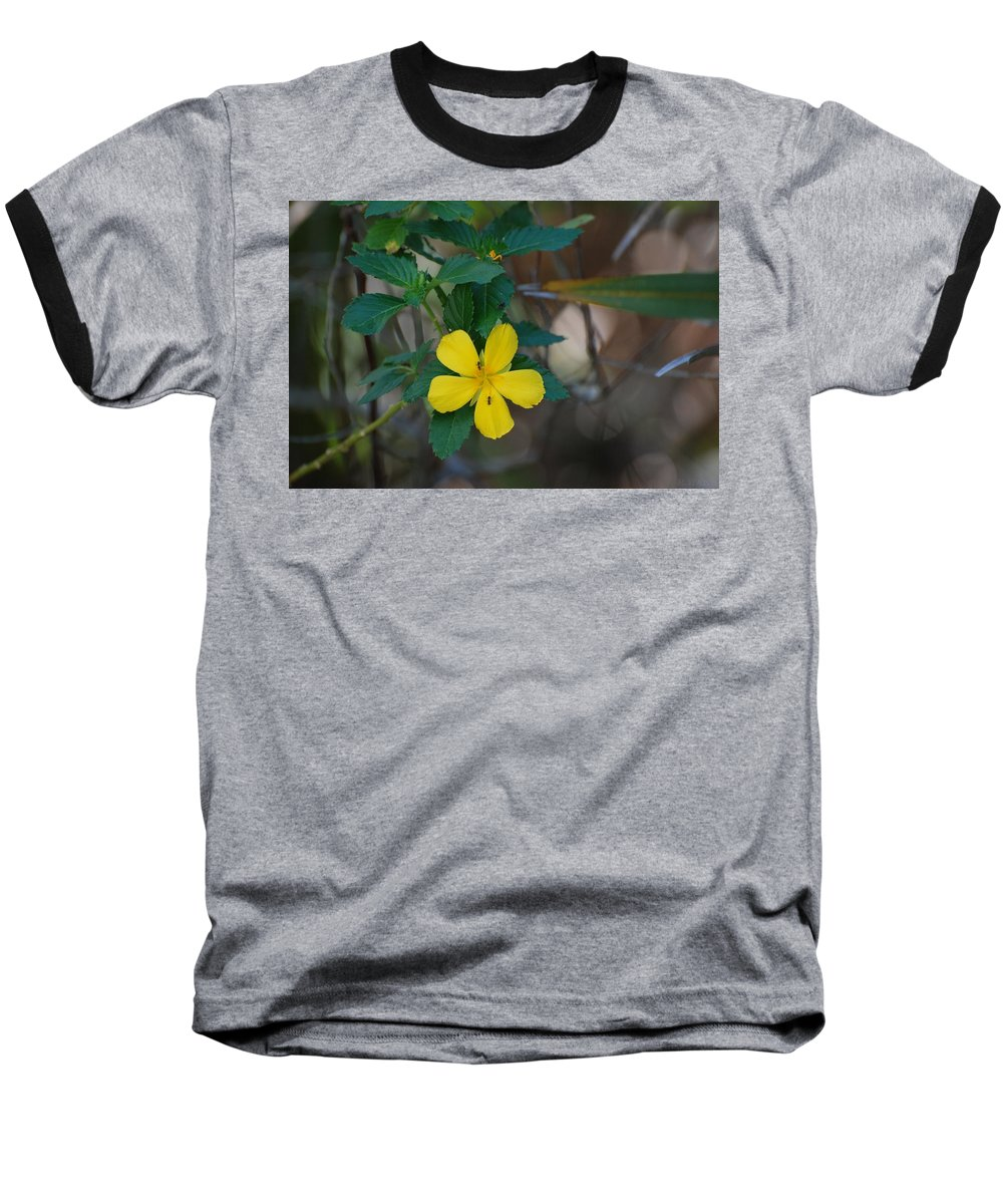 Macro Baseball T-Shirt featuring the photograph Ant Flowers by Rob Hans