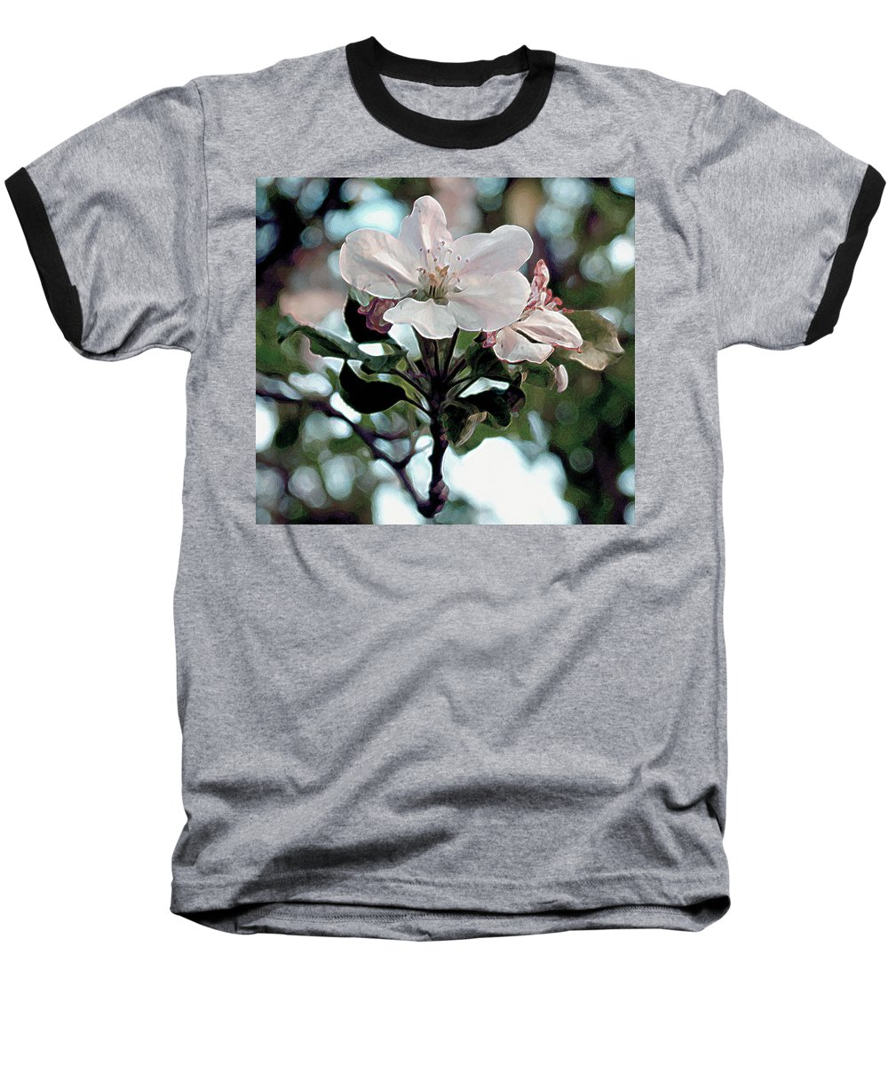 Flowers Baseball T-Shirt featuring the painting Apple Blossom Time by RC deWinter