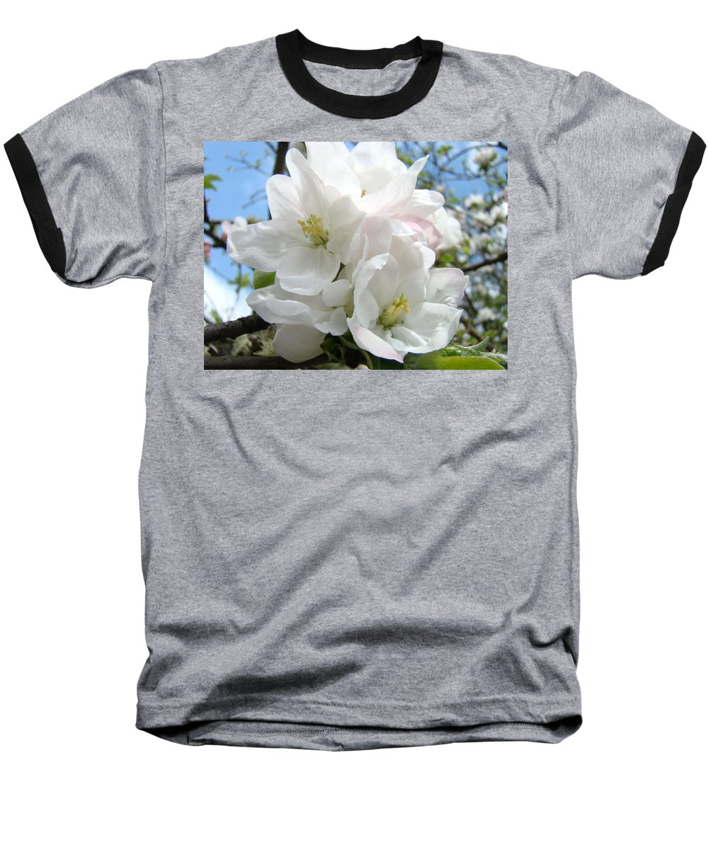 �blossoms Artwork� Baseball T-Shirt featuring the photograph Apple Blossoms Art Prints Giclee 48 Spring Apple Tree Blossoms Blue Sky Macro Flowers by Baslee Troutman