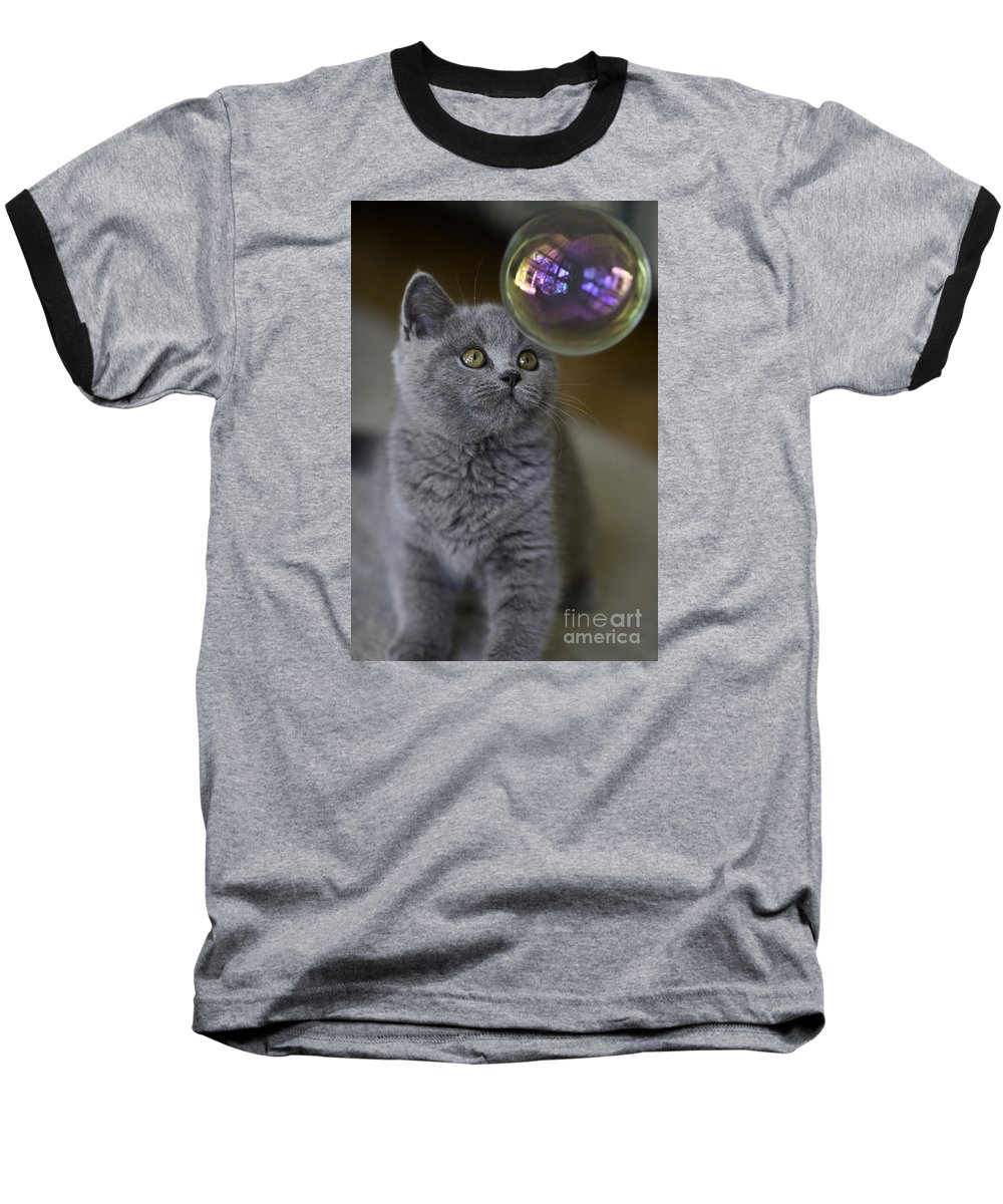 Cat Baseball T-Shirt featuring the photograph Archie With Bubble by Avalon Fine Art Photography