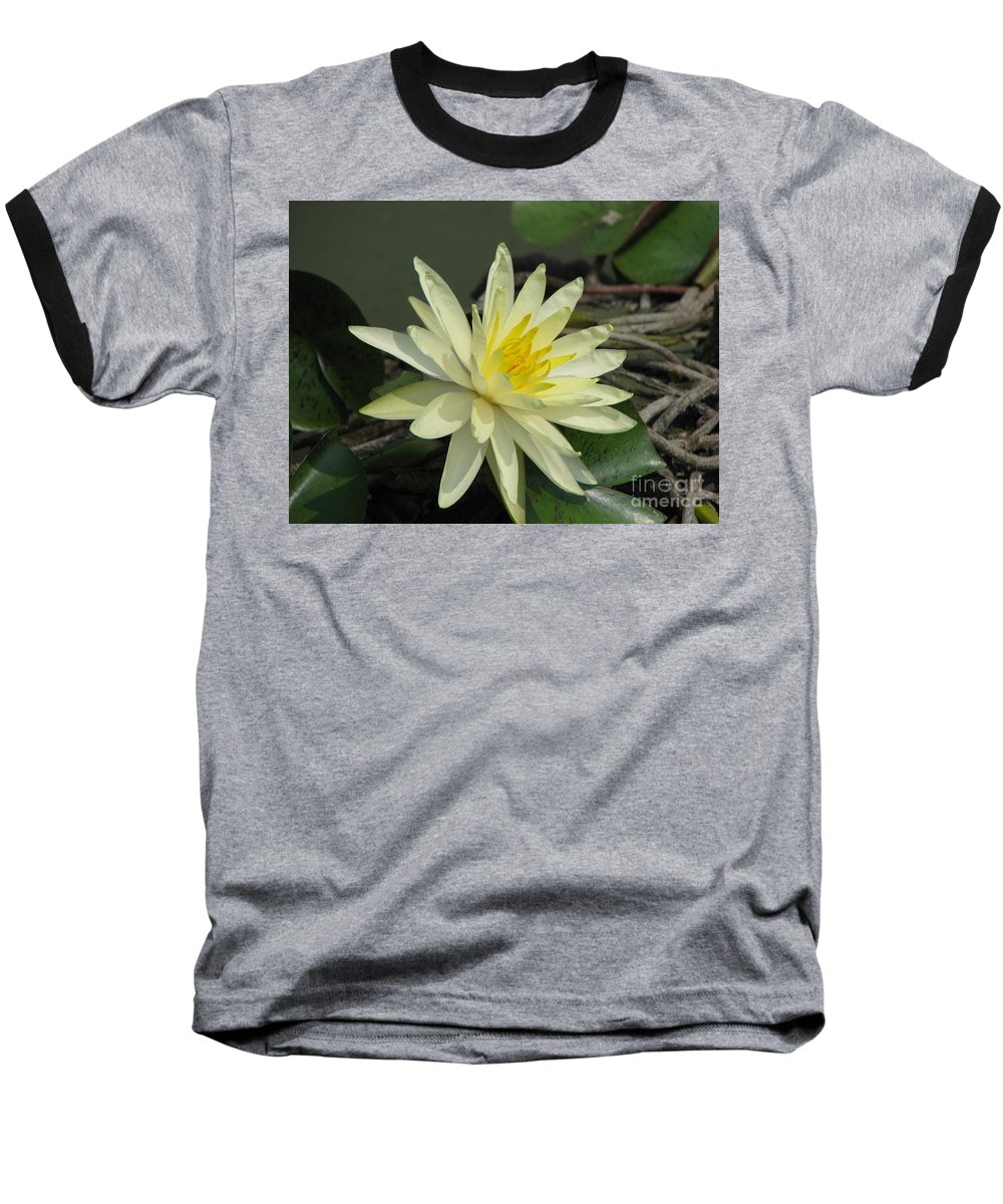 Lilly Baseball T-Shirt featuring the photograph At The Pond by Amanda Barcon