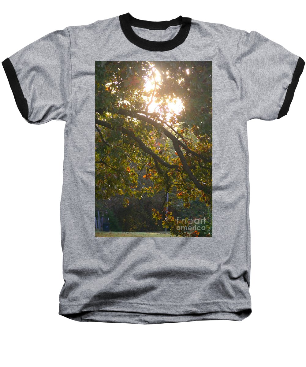 Autumn Baseball T-Shirt featuring the photograph Autumn Morning Glow by Nadine Rippelmeyer