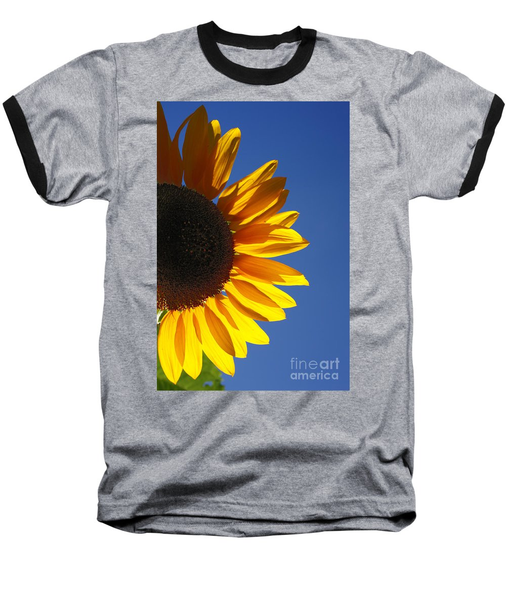 Back Light Baseball T-Shirt featuring the photograph Backlit Sunflower by Gaspar Avila