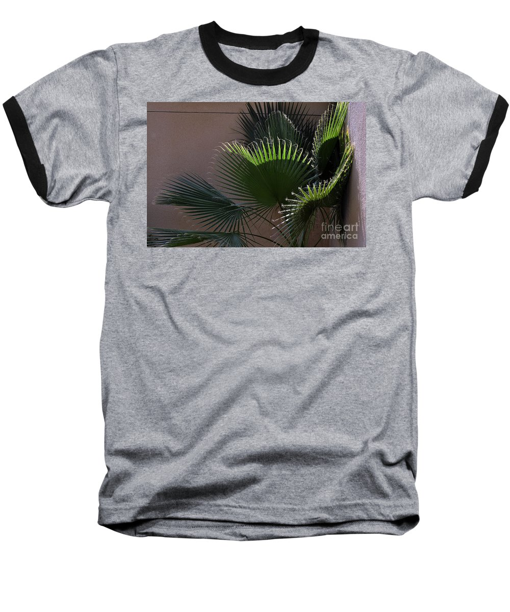 Clay Baseball T-Shirt featuring the photograph Biggest Fans by Clayton Bruster
