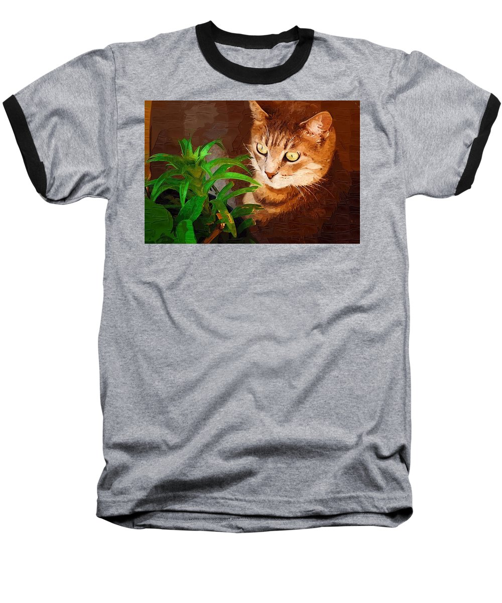 Cat Baseball T-Shirt featuring the photograph Bink by Donna Bentley
