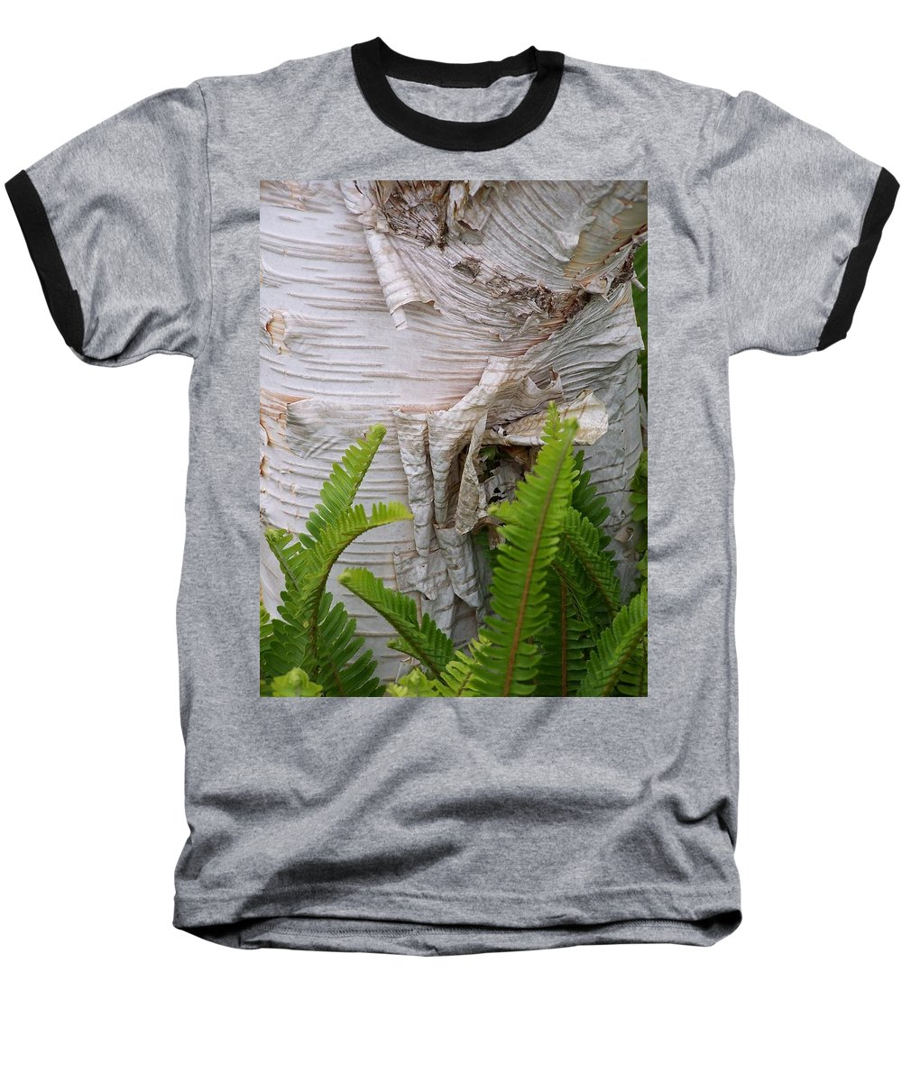 Tree Baseball T-Shirt featuring the photograph Birch Fern by Gale Cochran-Smith