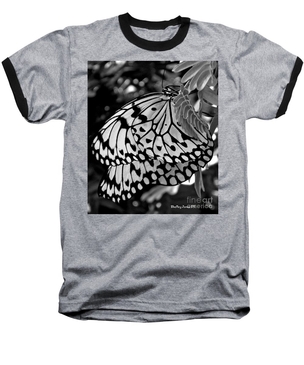 Photograph Baseball T-Shirt featuring the photograph Black And White Butterfly by Shelley Jones